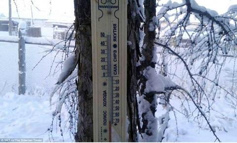 lanh gia Siberia
