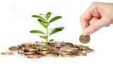 Hướng dẫn toàn tập cách làm giàu chỉ với số vốn ít ỏi