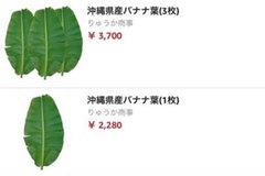Lá chuối ở Nhật 500 ngàn đồng, tại Việt Nam là thứ bỏ đi