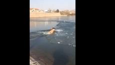 Bơi dưới mặt nước đóng băng, người đàn ông cuống cuồng không tìm ra chỗ ngoi lên