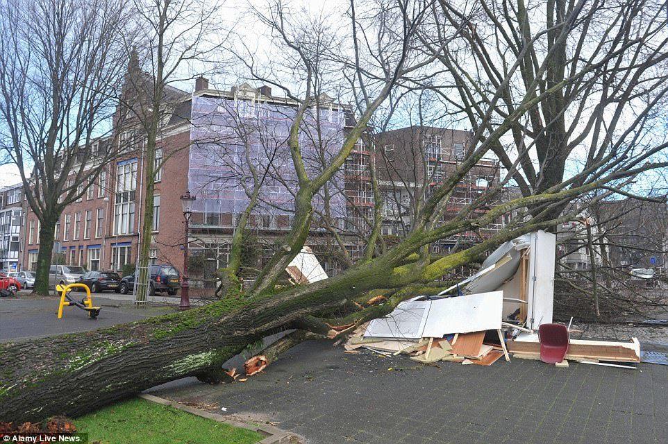 Cuồng phong thổi bay người, xe tải tại Hà Lan