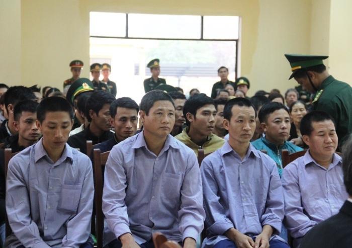 Chặt phá rừng,phá rừng pơ mu Quảng Nam,xét xử,đồn biên phòng,cửa khẩu Nam Giang,gỗ lậu