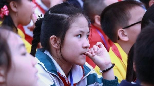 chương trình giáo dục phổ thông, chương trình giáo dục phổ thông mới, Chương trình giáo dục mới