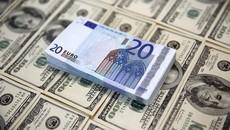 Tỷ giá ngoại tệ ngày 22/1: USD giảm, Euro tăng mạnh