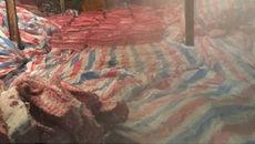 Tiêu hủy 4 tấn thịt heo phủ bạt trong nhà kho ở Sài Gòn