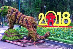 12 con giáp khổng lồ bằng lá tía tô ở Hà Nội