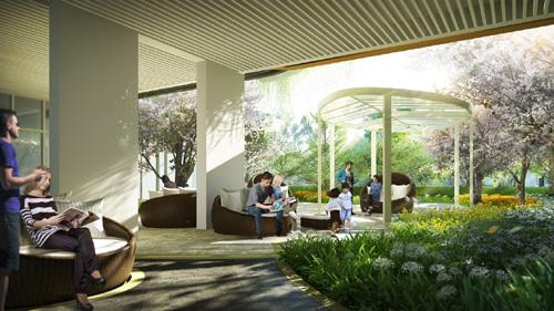 Mua nhà: chọn chung cư hay nhà mặt đất?