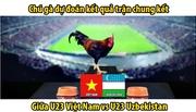 """Xem """"gà tiên tri"""" dự đoán chung kết U23 Việt Nam vs U23 Uzbekistan"""