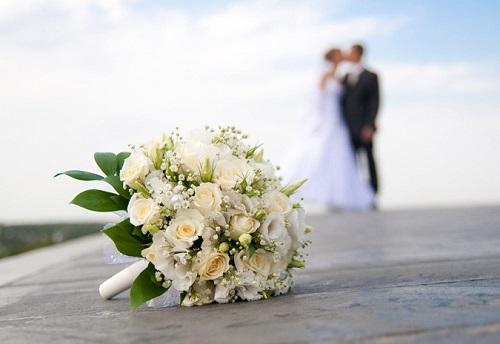 tư vấn pháp luật, luật hôn nhân và gia đình, tội phạm