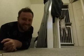 Bé hai tuổi trèo cửa thoăn thoắt để trốn khỏi phòng