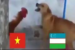Dự đoán diễn biến trận chung kết U23 châu Á dưới góc nhìn động vật
