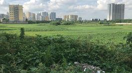 Chủ tịch Hà Nội yêu cầu rà soát các dự án ôm đất chậm triển khai
