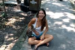Bị khỉ sàm sỡ, cô gái cười ngất trước camera