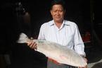 Câu được cặp cá sủ vàng 'khủng' trả 1,5 tỷ chưa chịu bán