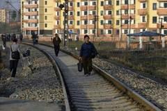Bị dịch cúm hoành hành, Triều Tiên xin hỗ trợ