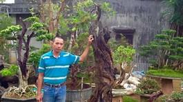 Chiêm ngưỡng 'cụ' dâu tằm độc đáo hơn 100 tuổi ở Lâm Đồng