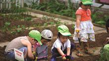 5 bước dạy con kỹ năng sống tự lập