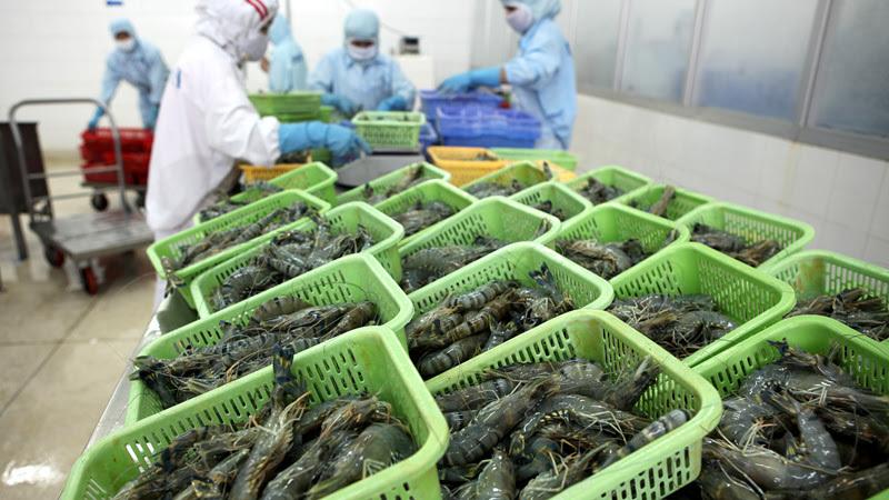 xuất khẩu nông sản,nông nghiệp,rau quả xuất khẩu,rau quả nhập khẩu