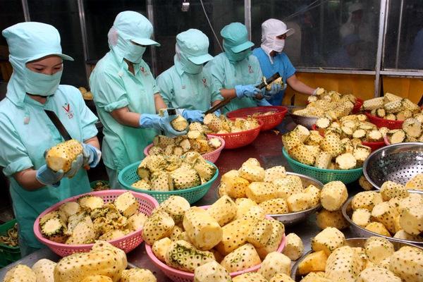 Kỳ tích rau quả vượt dầu khí, nghịch lý dân Việt cuồng đồ ngoại